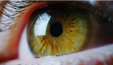 Hazel eye close up